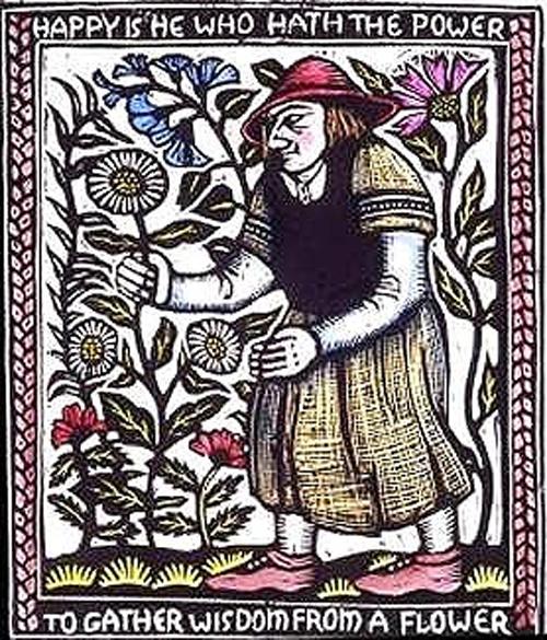 European Entheogens: Folk Medicine and MagicalAids