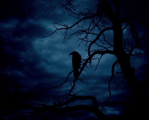 'Night'